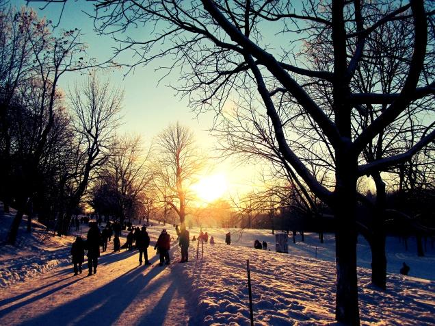 Mont-Royal, Montreal, Good Morning Montreal