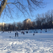 Parc Lafontaine, Good Morning Montreal