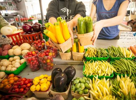 Zero déchet- légumes - Good Morning Montreal